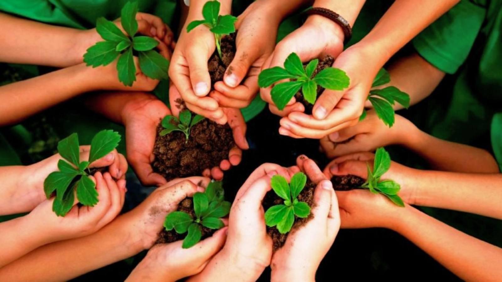 Environmental Education – Malta & Beyond